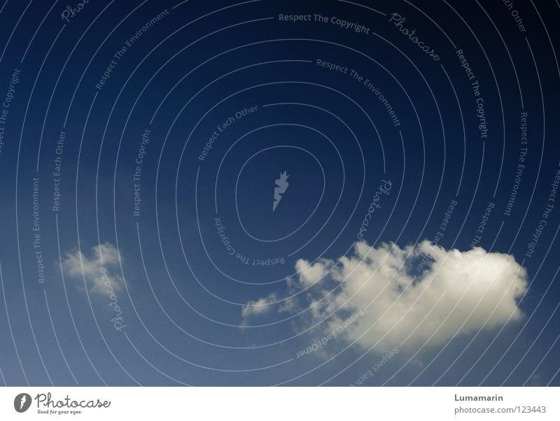 Windeseile Himmel blau schön Sommer Ferien & Urlaub & Reisen Wolken ruhig Freiheit träumen Luft hell Wetter Wind frei Geschwindigkeit Luftverkehr