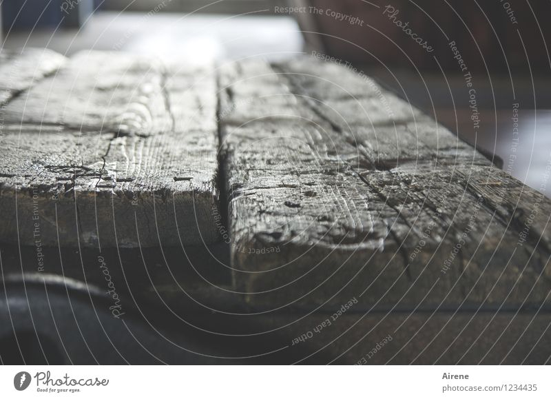 AST 7 Pott | Weltbedeutung Dielenboden Holzfußboden Holzbrett alt Originalität braun grau morsch Vergänglichkeit Abnutzung Leben historisch Gedeckte Farben