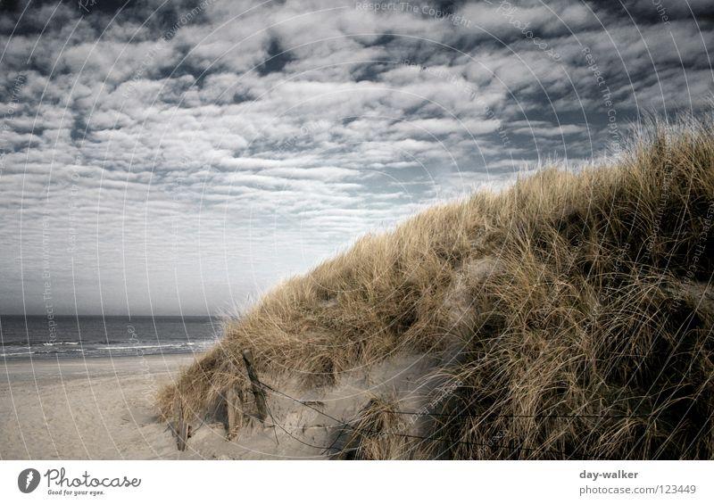 Coast to Coast Strand Meer See Küste Gras Wolken Wattenmeer Zugang Wolkendecke dunkel Licht Wellen Brandung Erde Sand Stranddüne uder Himmel Natur Wege & Pfade