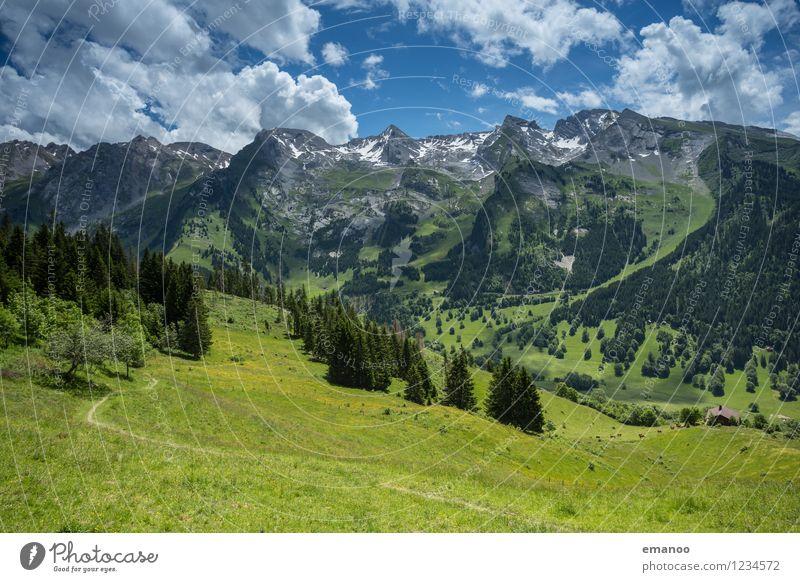 Alpental Himmel Natur Ferien & Urlaub & Reisen Pflanze blau Sommer grün Baum Landschaft Erholung Wolken ruhig Wald Berge u. Gebirge Gras Felsen