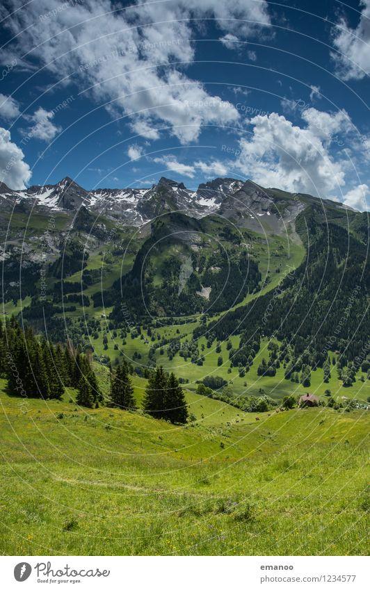 french alps Himmel Natur Ferien & Urlaub & Reisen Pflanze grün Sommer Baum Landschaft Wolken Ferne Wald Berge u. Gebirge Wiese Gras Freiheit Felsen