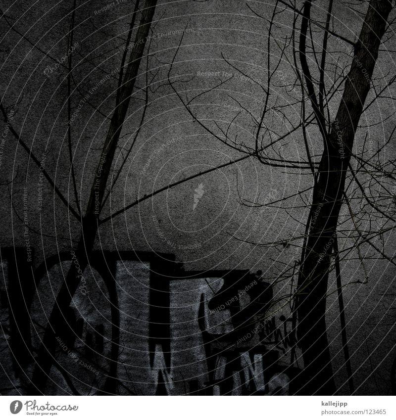 dem licht entgegen Baum Stadt Herbst Wand Mauer Licht Hinterhof Park Friedhof Trauer Wachstum Reifezeit Pflanze Natur Spray Tagger Straßenkunst Kunst trist