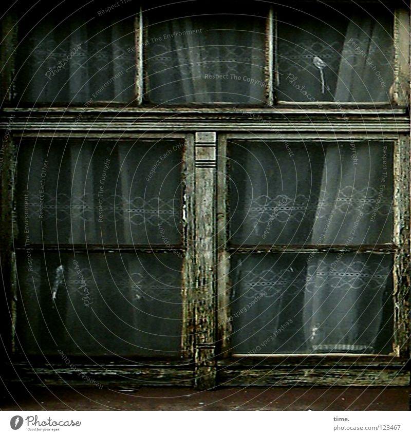 Abgewickelte Heimat Wohnzimmer Bahnhof Fenster Glas alt Einsamkeit Farbe Verfall Vergänglichkeit Gardine Fensterkreuz Glasscheibe Spinnennetz verrotten morsch
