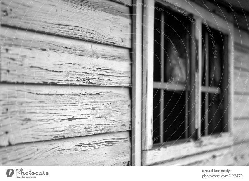 Holzschuppen Schwarzweißfoto Außenaufnahme Detailaufnahme Strukturen & Formen Textfreiraum links Tag Zentralperspektive Blick Haus Menschenleer Hütte Bauwerk