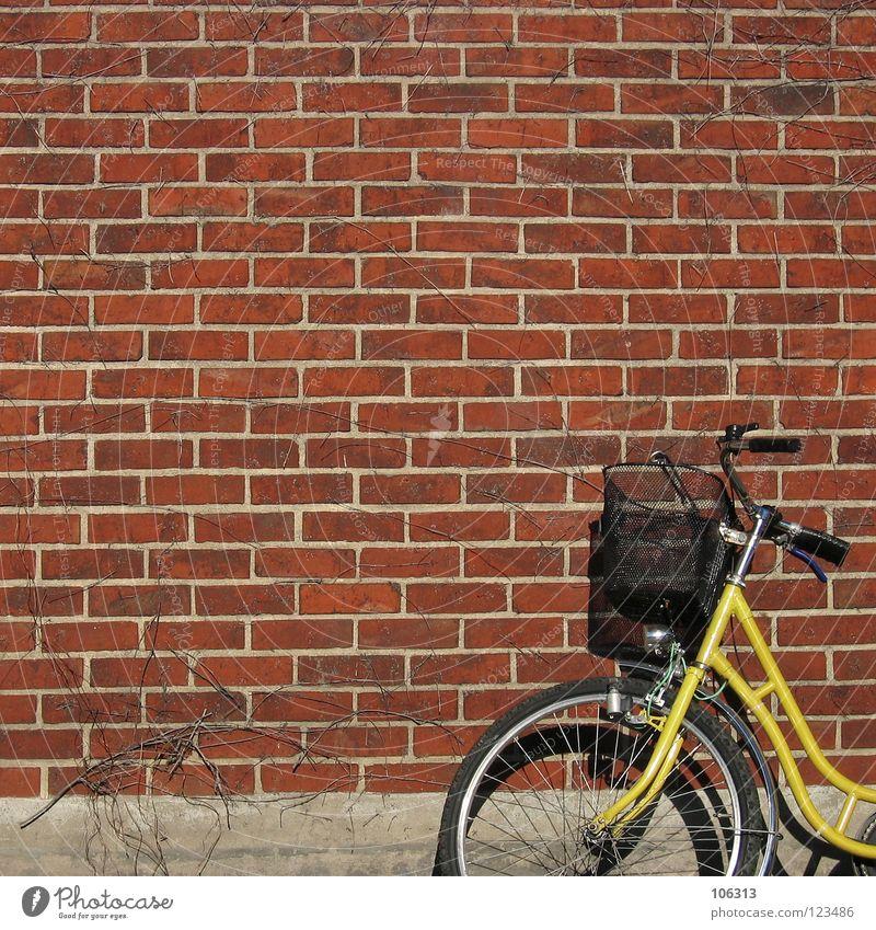 MR. POSTMAN? Fahrrad Post Mauer Wand Metall Backstein gelb rot Damenfahrrad Korb old-school leer Dinge anlehnen fahrradkorb Fahrradlenker Backsteinwand