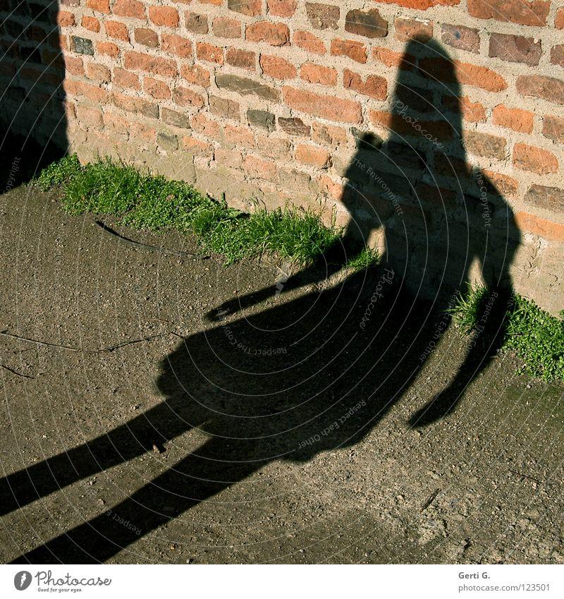 Mensch, Mädchen Frau Kleid Schneewittchen dunkel Mauer schwarz Gras Schatten grell Koloss Macht krumm gekrümmt Gefühle klein hell Arme puffärmel Wege & Pfade