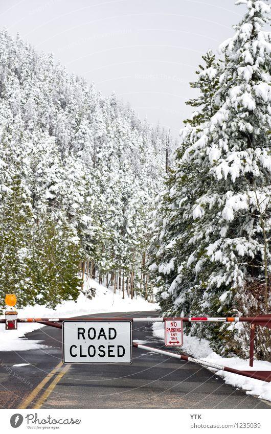 Better turn around Natur Landschaft Luft Wasser Himmel Wolken Winter Klima schlechtes Wetter Eis Frost Schnee Pflanze Baum Wald Berge u. Gebirge Gipfel Verkehr