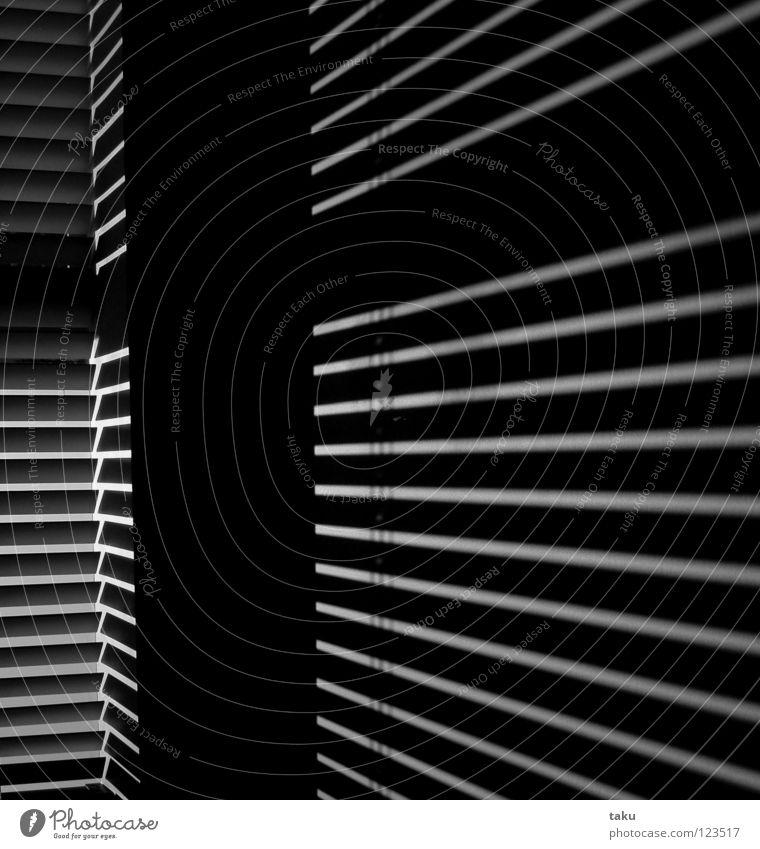 STRIPES II Licht Raum Wand Streifen Schwarzweißfoto chch Sonne Linie Schatten Reflexion & Spiegelung reflection living space funky modern ...