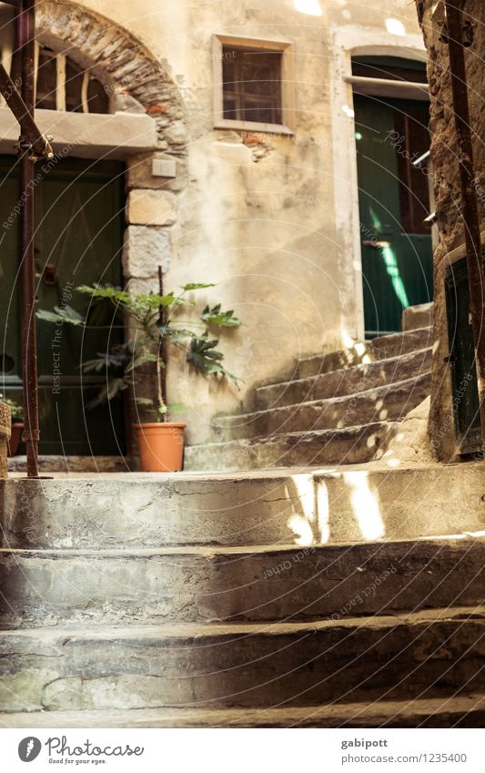 Vernazza. Auf dem Weg nach oben Ferien & Urlaub & Reisen Sommer Sonne Erholung Haus Ferne Wege & Pfade Freiheit braun Fassade Zufriedenheit Treppe Tourismus