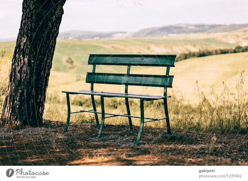 Hinsetzen. Ausruhen. Entspannen. Ferien & Urlaub & Reisen grün Sommer Sonne Baum Erholung Landschaft ruhig Ferne gelb Leben Wiese Zufriedenheit Feld Idylle wandern
