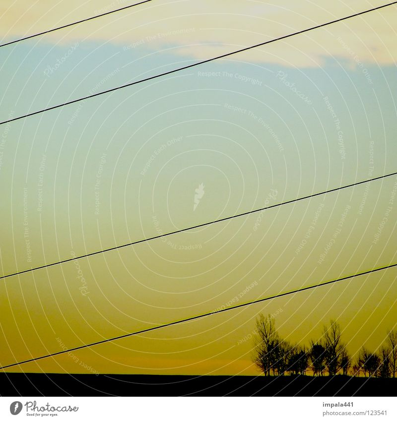 gradlinig Sonnenuntergang gelb Baum Wäldchen schwarz Wolken Elektrizität Verlauf 4 modern Langeweile Berge u. Gebirge blau Linie Himmel Erde Landschaft Kabel