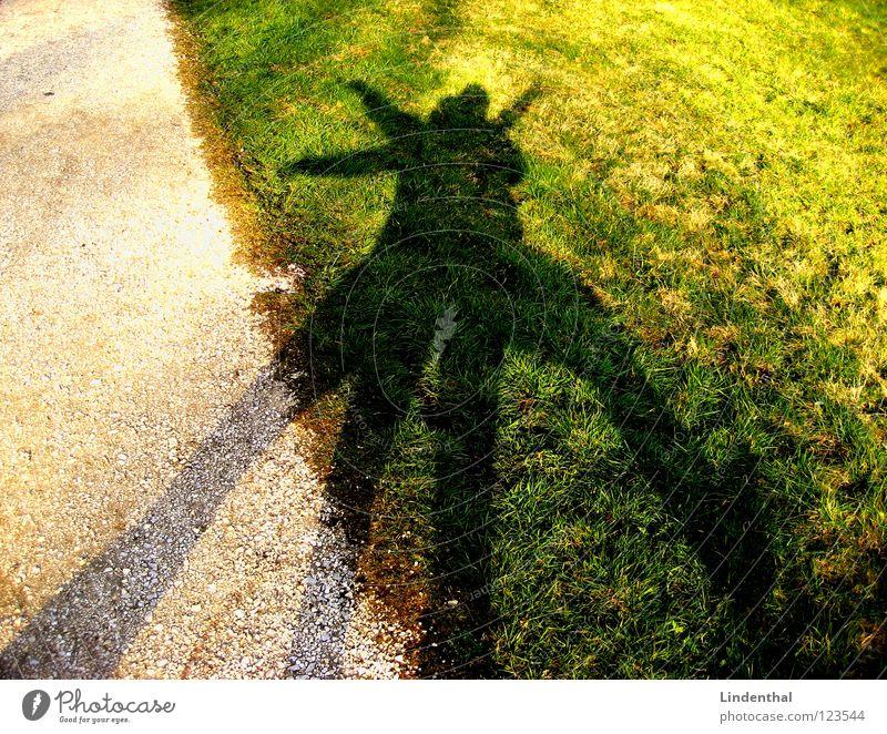 Shadow of Fun Freude Wiese Spielen lustig Tanzen Kies Unsinn Schattenspiel