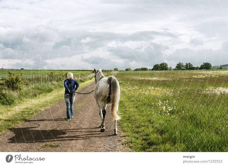 Mädchen mit Schimmel Reiten Mensch feminin Junge Frau Jugendliche Erwachsene 1 Himmel Wolken Gewitterwolken Schönes Wetter Wiese Feld Tier Haustier Pferd