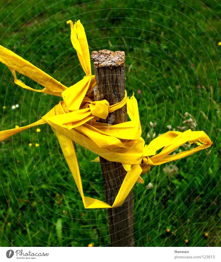 Bandsalat Pfosten Stock Barriere Wiese Gras gelb grün braun Schleife Genauigkeit unordentlich Stabilität durcheinander Schnur Begrenzungsband Weide Knoten