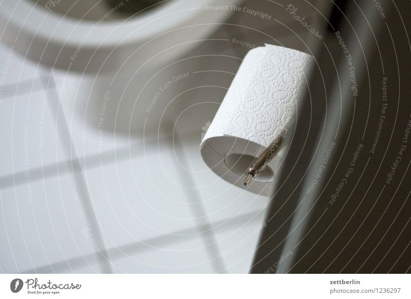 Klo Toilette Miettoilette sanitär Toilettenpapier Tür Eingang Häusliches Leben Wohnung Fliesen u. Kacheln Tiefenschärfe Schwache Tiefenschärfe