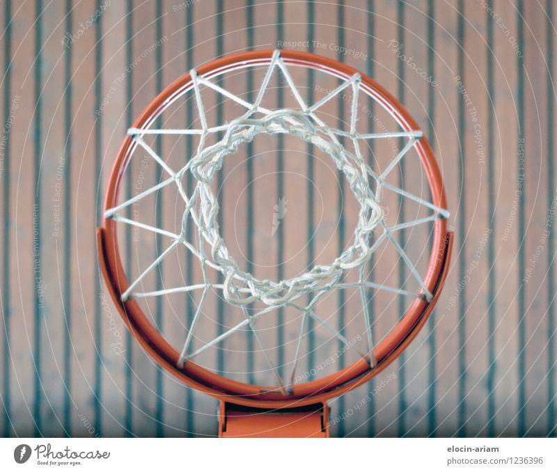 Durch die Mitte Holz werfen dünn Basketballkorb Sport Sporthalle Farbfoto Innenaufnahme Kunstlicht Froschperspektive Blick nach unten