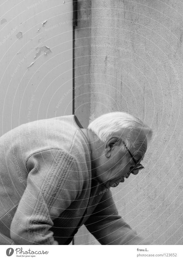 Vita activa Mann Senior Aktion gebeugt bücken Rücken krumm Arbeit & Erwerbstätigkeit fleißig Konzentration weißhaarig Silhouette Großvater zielstrebig alt