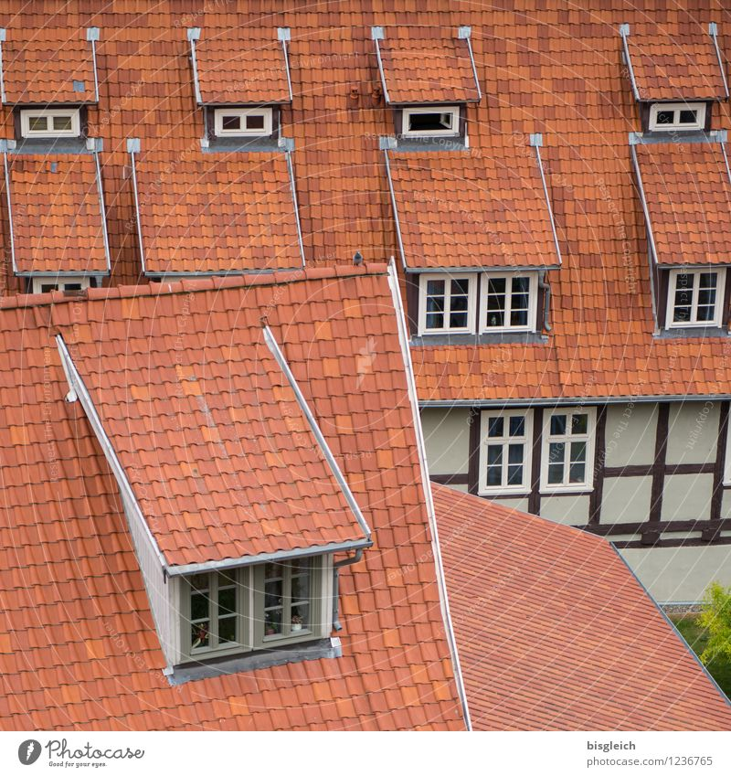 Quedlinburg II Ferien & Urlaub & Reisen Stadt rot Haus Fenster Architektur Autofenster Europa Dach Bundesadler Altstadt Städtereise Dachziegel Fachwerkhaus