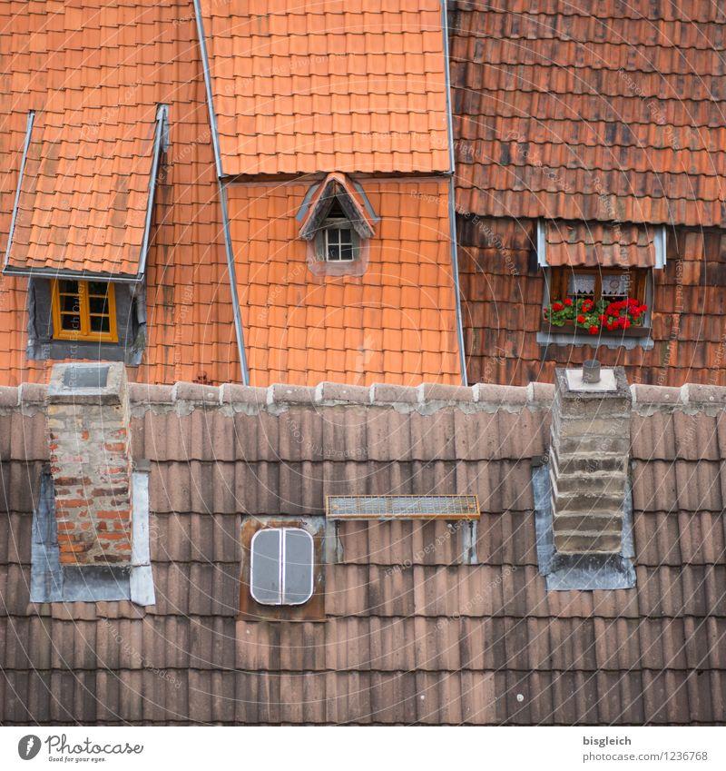 Quedlinburg III Stadt rot Haus Fenster Architektur Gebäude Europa Dach Bundesadler Altstadt Schornstein Dachziegel