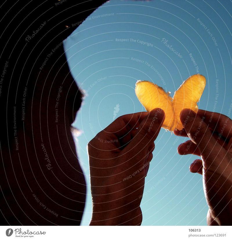 FRUITY BUTTERFLY | LIEBE | BEZIEHUNG | FREIHEIT | FRIEDEN Mann blau Ferien & Urlaub & Reisen Hand schön Sommer Sonne Freude Liebe gelb Ernährung Leben Wärme