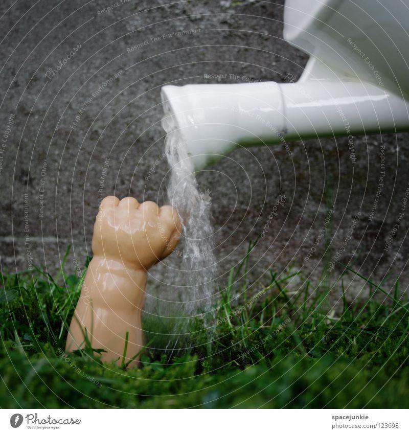 Water Gießkanne grün Wachstum Reifezeit Hand Faust Spielzeug skurril Humor Freude Wasser water Rasen Ernte Arme Puppenarm Statue
