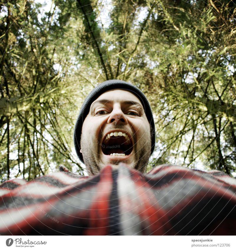 In the forest Wald Baum Mann Beruf Holz Panik Unfall Ärger böse Aggression Freak Porträt Wut Rüpel unfair Biest herzlos Grobian Gesicht Freude Natur