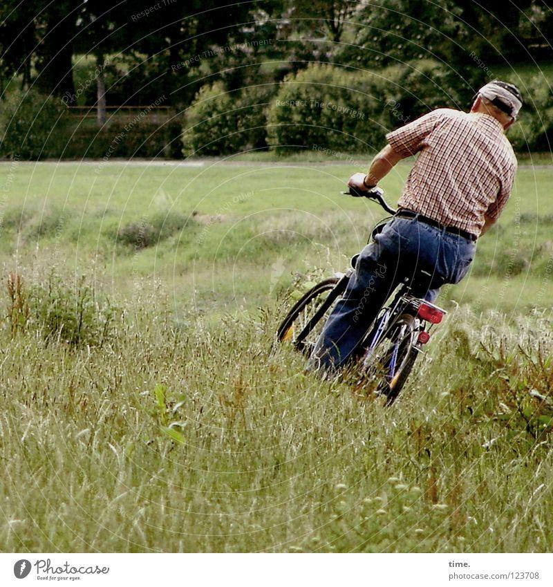 Ein Wille. Ein Weg. Ein Schicksal. Mann grün Erwachsene Wiese Senior Gras Wege & Pfade Park Fahrrad maskulin Verkehr gefährlich Wunsch Kreativität Fahrradfahren skurril