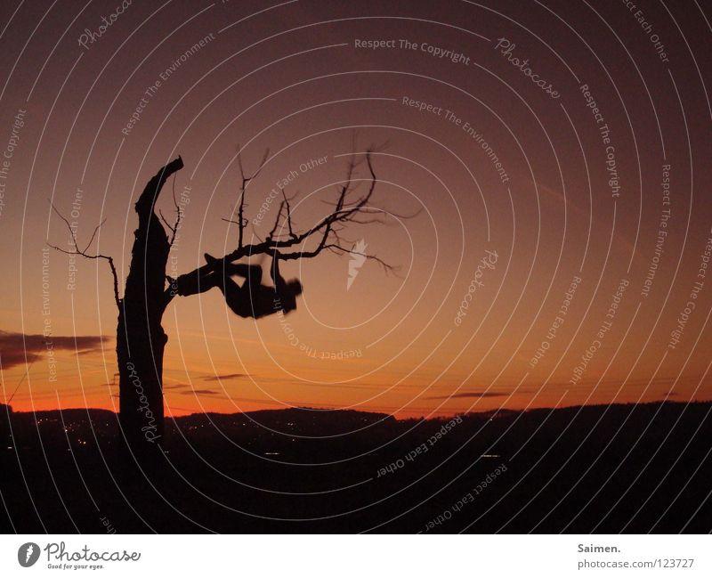 Dreifingerfaultier Mensch schön alt Himmel Baum Freude ruhig schwarz Wolken Erholung Freiheit träumen Feld schlafen zart sanft