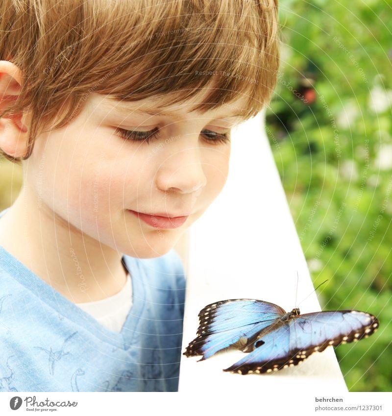 die wunder dieser welt! Mensch Kind blau schön Erholung Tier Gesicht Auge Junge Familie & Verwandtschaft außergewöhnlich Garten Haare & Frisuren Park