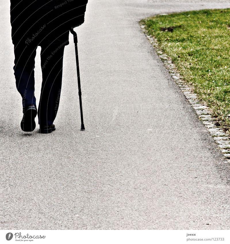 Durchhalten Mensch Mann alt grün schwarz Einsamkeit Herbst Senior Wege & Pfade grau gehen Rücken 60 und älter Schmerz Männlicher Senior Stock