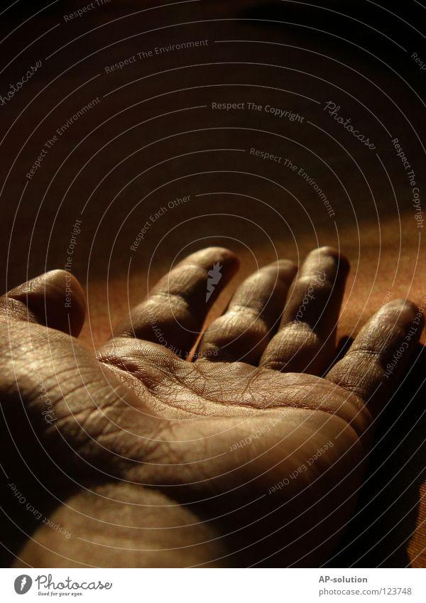 Hand Mensch Hand alt dunkel Tod orange Angst Arme gold Finger Trauer gefährlich bedrohlich gruselig obskur Falte