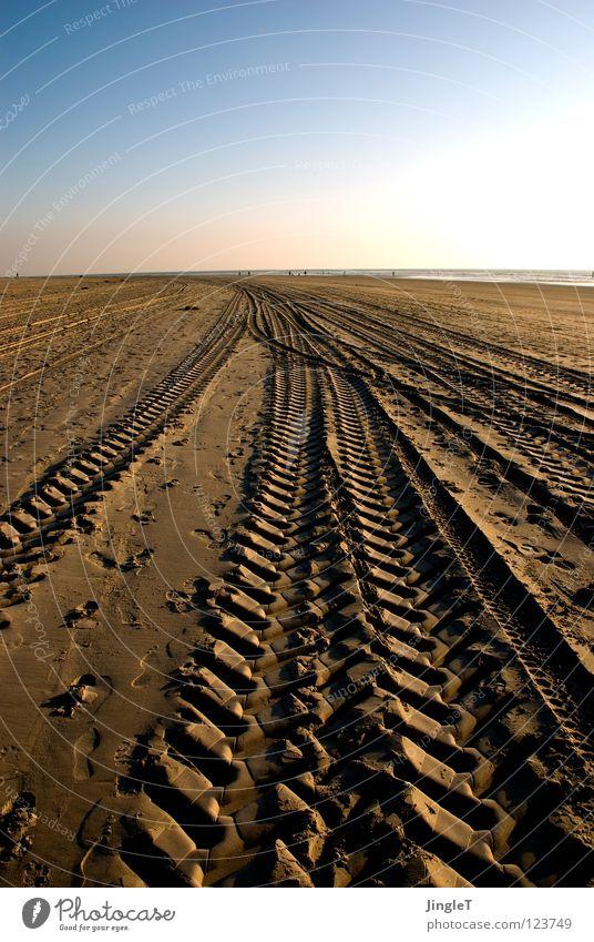 spurensuche Strand Küste Meer See Möwe Müll Silhouette Reifenspuren gelb braun ruhig Erholung atmen Ameland Niederlande Nordsee Sand Spuren Profil strandexpress