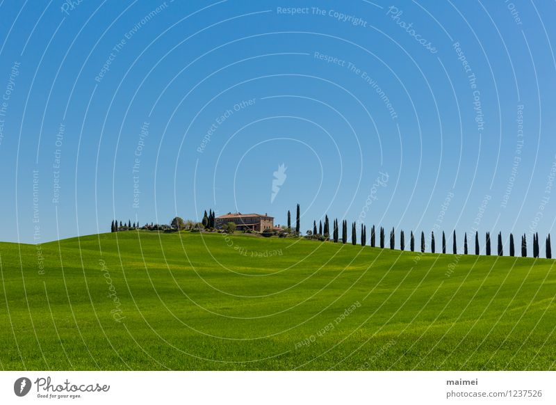 Ein Landgut in der Toskana im Frühling Ferien & Urlaub & Reisen Haus Landschaft Wolkenloser Himmel Sonnenlicht Baum Wiese Feld Hügel ästhetisch blau grün