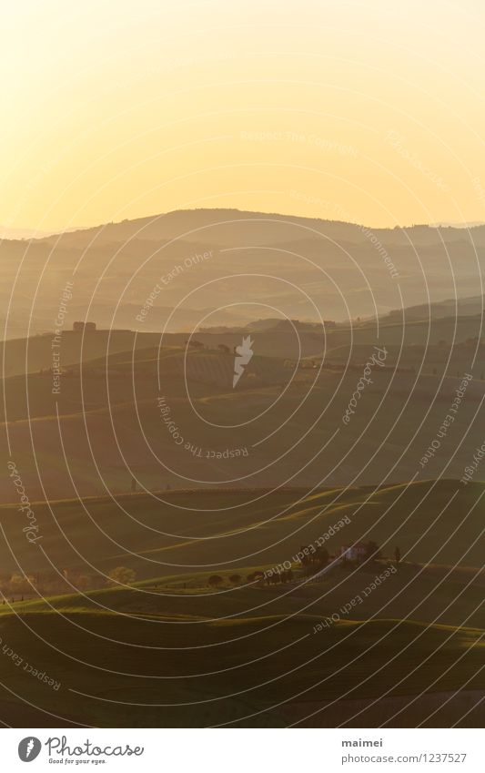 Ein Landgut in der Toskana im Morgenlicht Ferien & Urlaub & Reisen Haus Landschaft Wolkenloser Himmel Sonnenaufgang Sonnenuntergang Frühling Schönes Wetter Baum