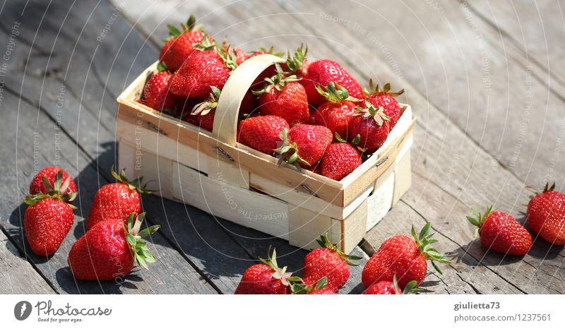 Erdbeerkörbchen Lebensmittel Ernährung Bioprodukte Vegetarische Ernährung Garten Natur Sommer Schönes Wetter frisch Gesundheit lecker saftig rot Zufriedenheit