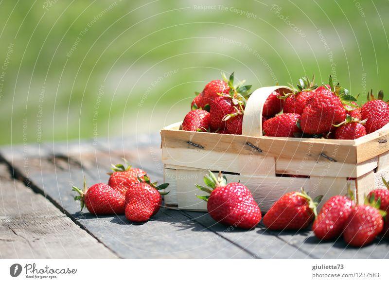 ...perfekt für die Sommerfigur Lebensmittel Frucht Erdbeeren Ernährung Bioprodukte Vegetarische Ernährung Garten Natur Schönes Wetter frisch Gesundheit lecker