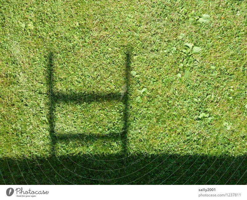 Klettergarten... Schönes Wetter Gras Garten Wiese Leiter Leitersprosse natürlich oben grün Klettern Schattenspiel Schattenseite Strukturen & Formen aufsteigen