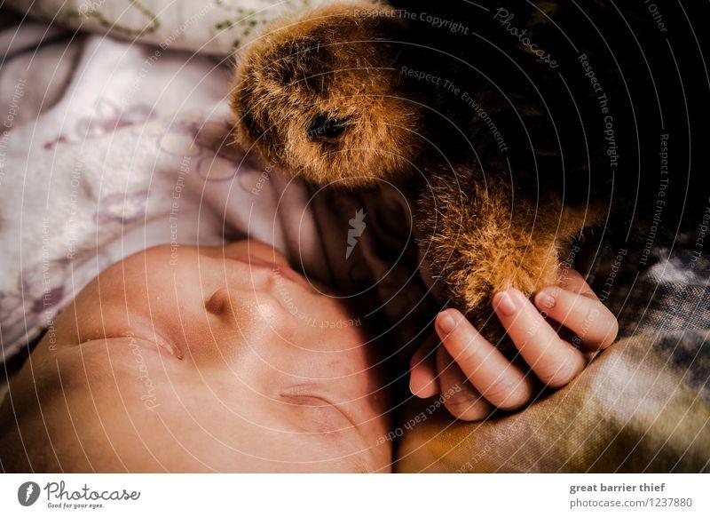 Schlafendes Baby mit Kuscheltier Mensch feminin Kindheit Kopf Hand 1 0-12 Monate schlafen braun mehrfarbig gelb rot Schildkröte Stofftiere Müdigkeit Farbfoto