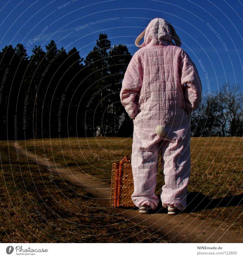 HasenMission | 2008 - zwischenstopp Hase & Kaninchen Ostern rosa weiß Quaste kuschlig himmelblau genießen schön Physik Denken Dinge Hasenohren Freude lustig