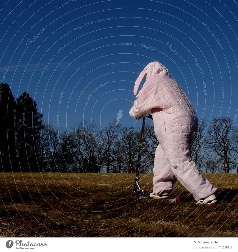 HasenMission | 2008 - düsen Hase & Kaninchen Ostern rosa weiß Quaste kuschlig himmelblau genießen schön Physik Dinge Hasenohren Freude lustig offen unterwegs