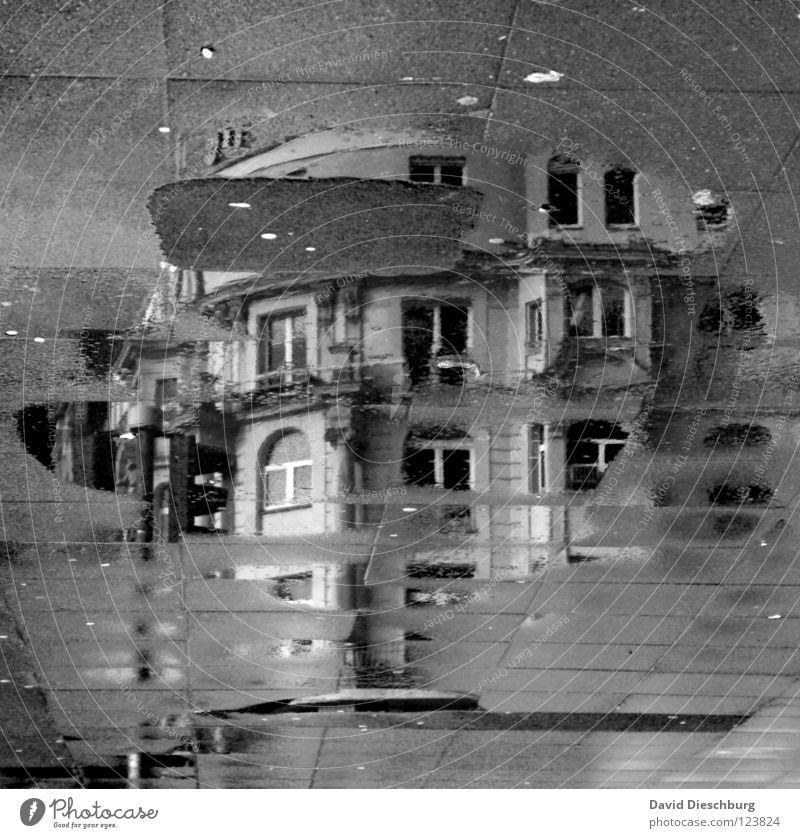 Ghostcastle **60** Haus Fenster Fensterrahmen Ampel Pfütze schwarz Balkon Reflexion & Spiegelung Frankfurt am Main Mittag Gebäude unvollendet Altbau Quadrat