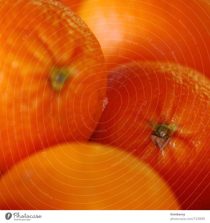 orangecase (director's cut) Farbe Ernährung Lebensmittel Gesundheit Orange Frucht frisch Mahlzeit Vitamin Schalen & Schüsseln Saft Vegetarische Ernährung