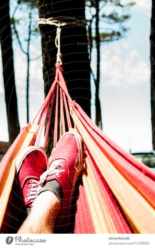 Surfen IX Mensch Himmel Natur Ferien & Urlaub & Reisen Jugendliche Sommer Sonne Baum Erholung rot Junger Mann Landschaft ruhig 18-30 Jahre Wald Erwachsene