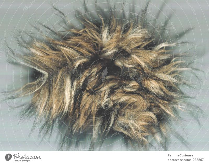 Puschel Haare & Frisuren Kunst Behaarung Kreativität weich seltsam Kunstwerk scheckig Perücke Pelzjacke ausgefranst