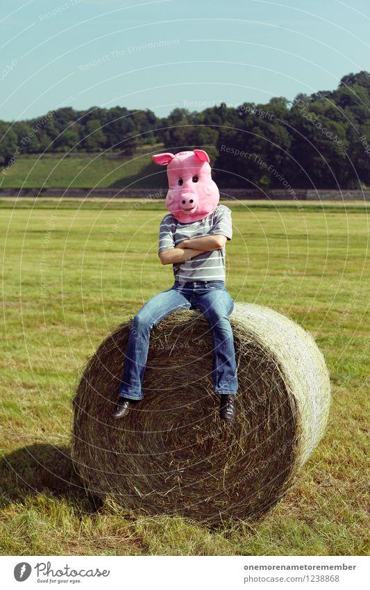 Pigface Freude Denken Kunst rosa ästhetisch warten Jugendkultur Maske Kunstwerk Kostüm Schwein spaßig Unsinn Spaßvogel Fremder Strohballen