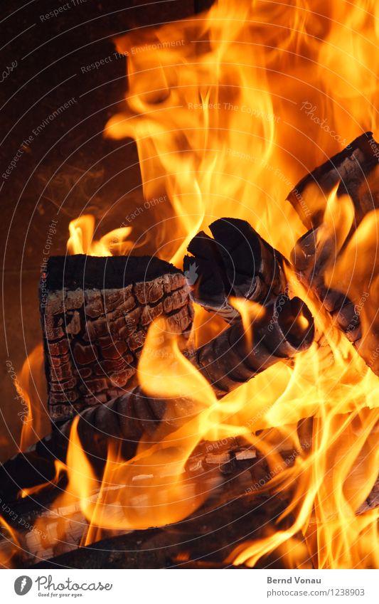 hitzewelle Holz stark Kaminfeuer brennen Wärme Flamme gelb schwarz braun Energie Natur Grillen Farbfoto Außenaufnahme Menschenleer Tag Licht