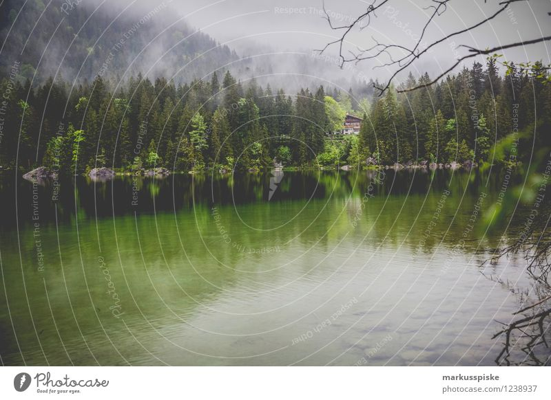 hintersee, ramsau, berchtesgaden Ferien & Urlaub & Reisen Pflanze Sommer Sonne Landschaft Tier Ferne Umwelt Berge u. Gebirge See Felsen Freizeit & Hobby