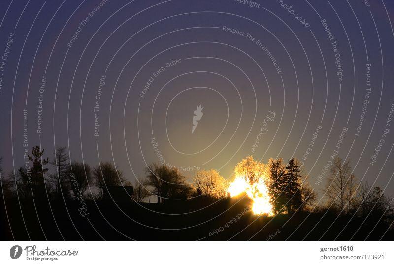 Sonnenfeuer II Sonnenaufgang Baum glühen Glut Silhouette schwarz Horizont dunkel Licht Stimmung gähnen Winter Himmelskörper & Weltall Brand Beleuchtung blau