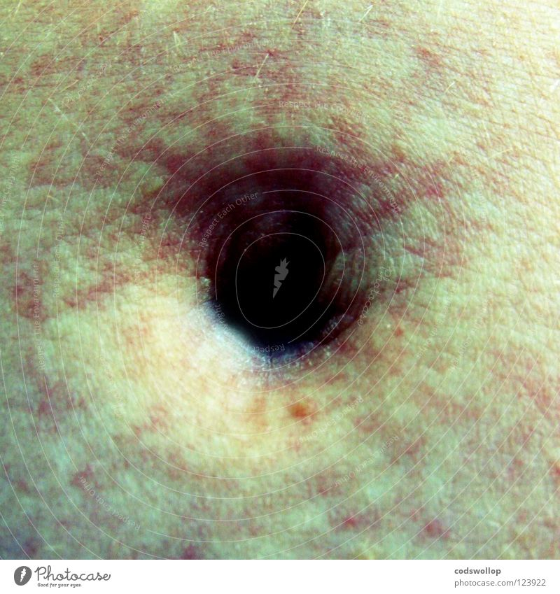 umbilicus Fussel Bauchnabel Wissenschaften belly tummy navel Haut skin fluff