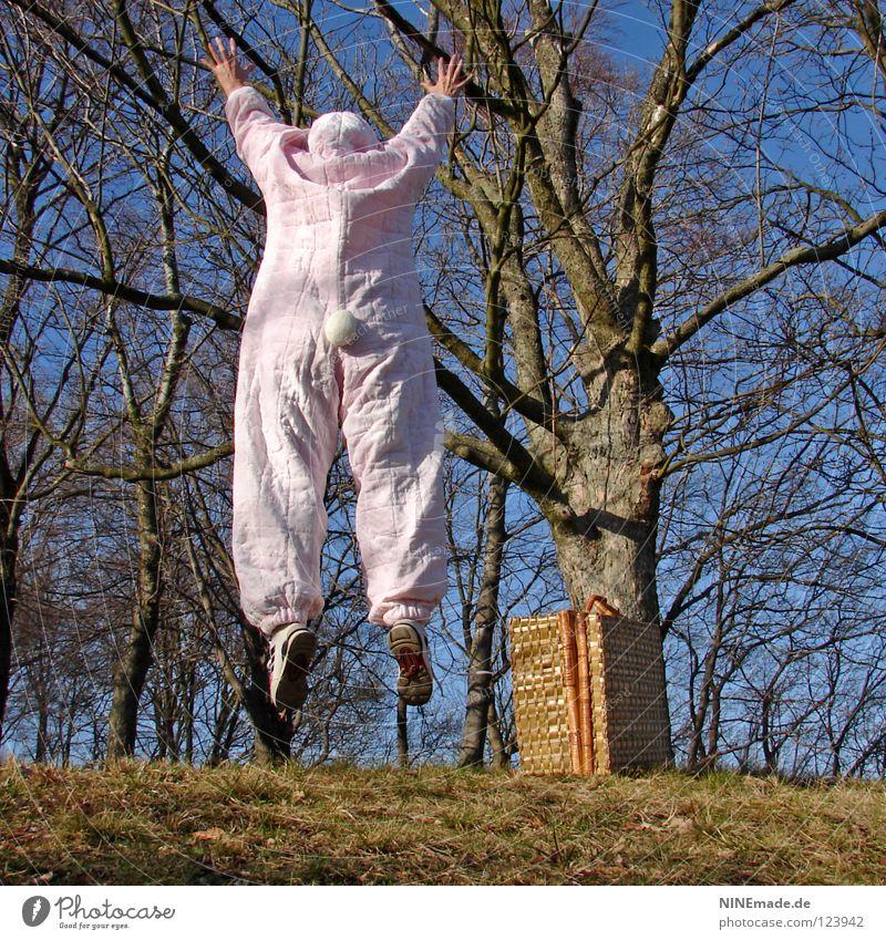 HasenMission | 2008 - ausflipp Mensch Himmel Natur blau weiß schön Baum Freude Tier Wald Wiese Holz Gras springen Wärme Luft